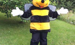 Walkact Biene Summi buchen