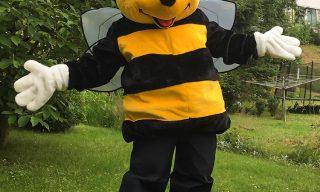 Biene Summi vermietung